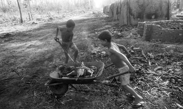 os-meninos-carvoeiros
