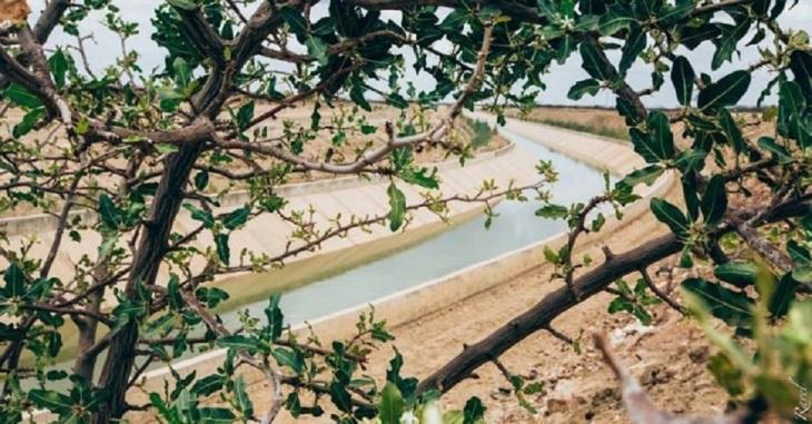 Canal do Rio São Francisco