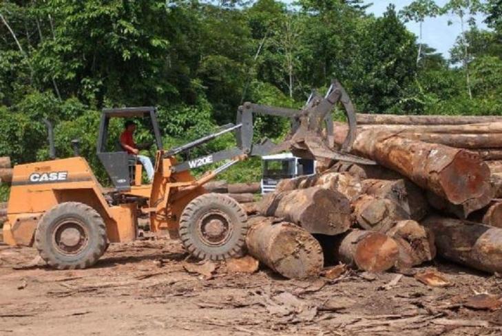 desmatamento-na-amazonia
