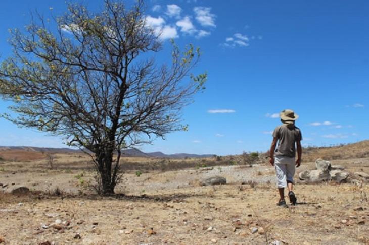 Desertificação de solos