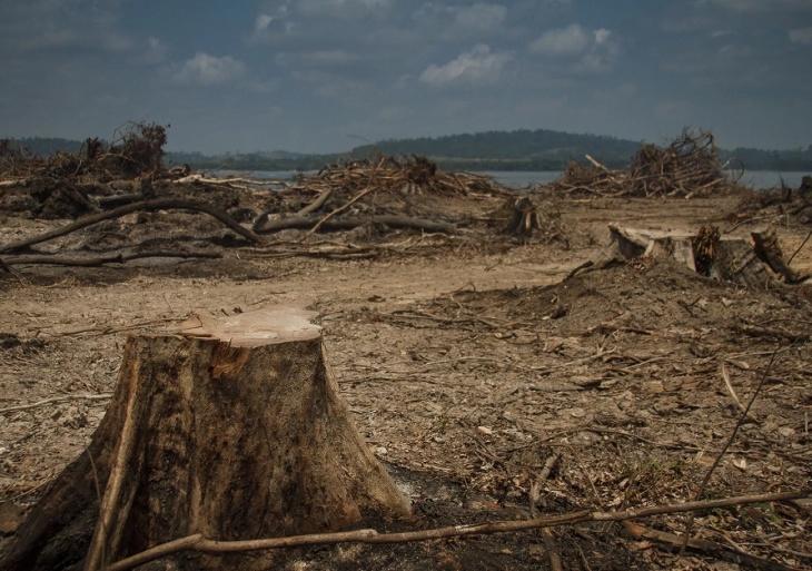 Desmatamento para formação de lagos de hidrelétricas