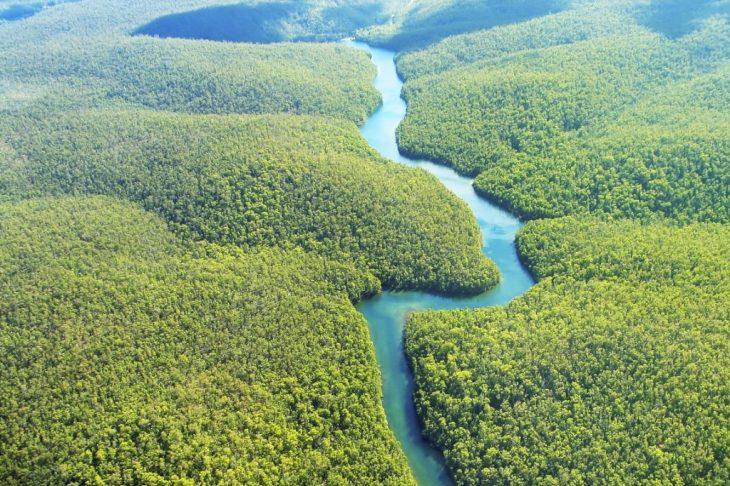 A Amazônia que queremos
