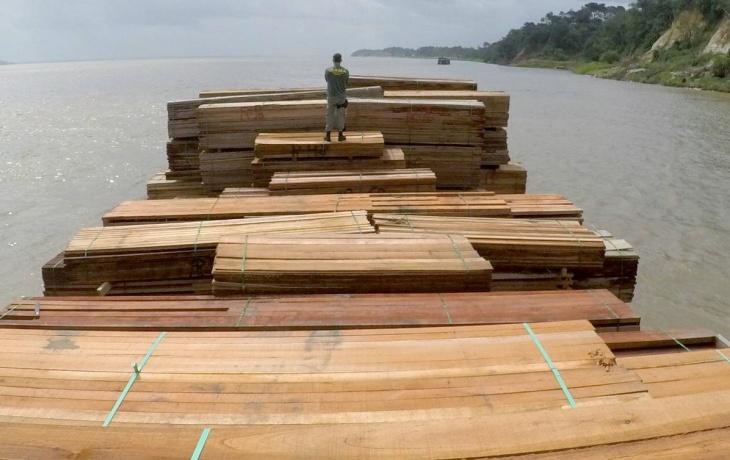 Exportação ilegal de madeiras na Amazônia