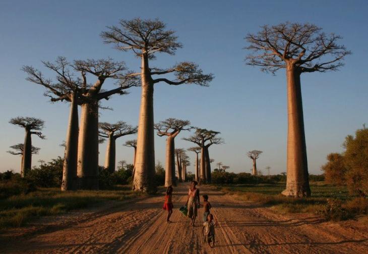 Madagascar e os problemas no abastecimento de água