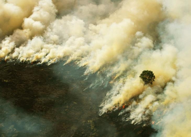 Incêndio na Indonésia